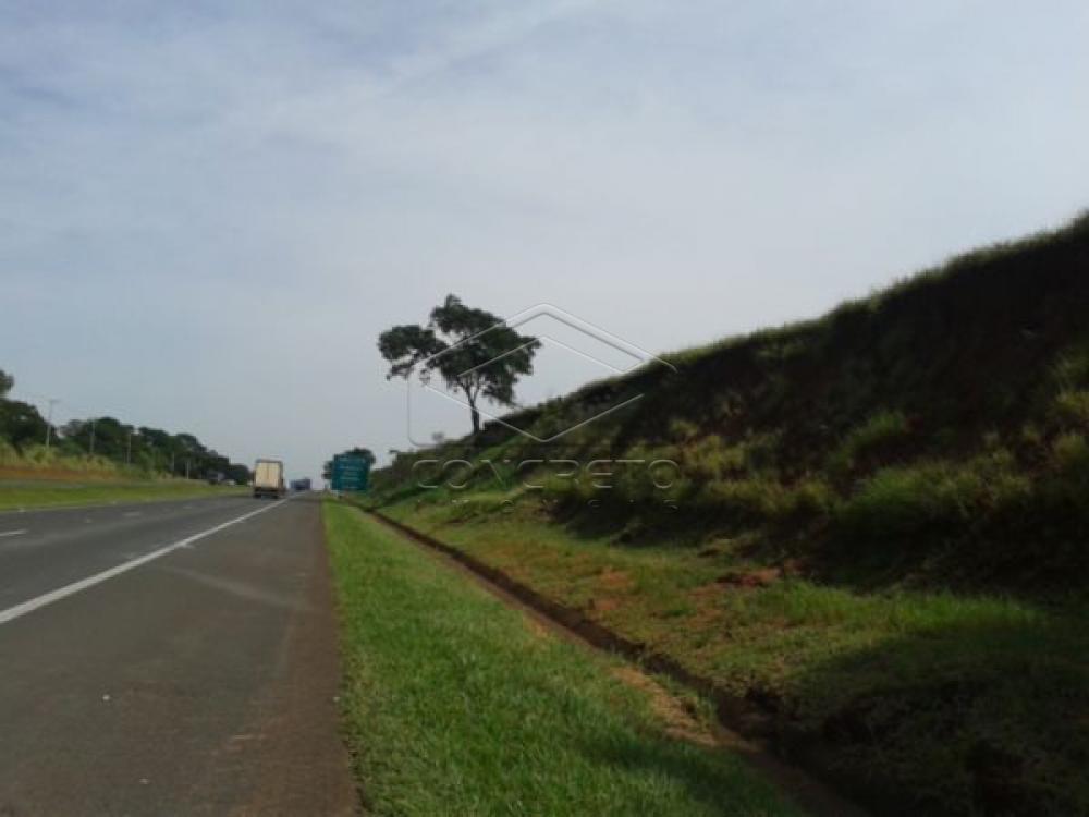 Comprar Terreno / Padrão em Sao Manuel R$ 500.000,00 - Foto 1