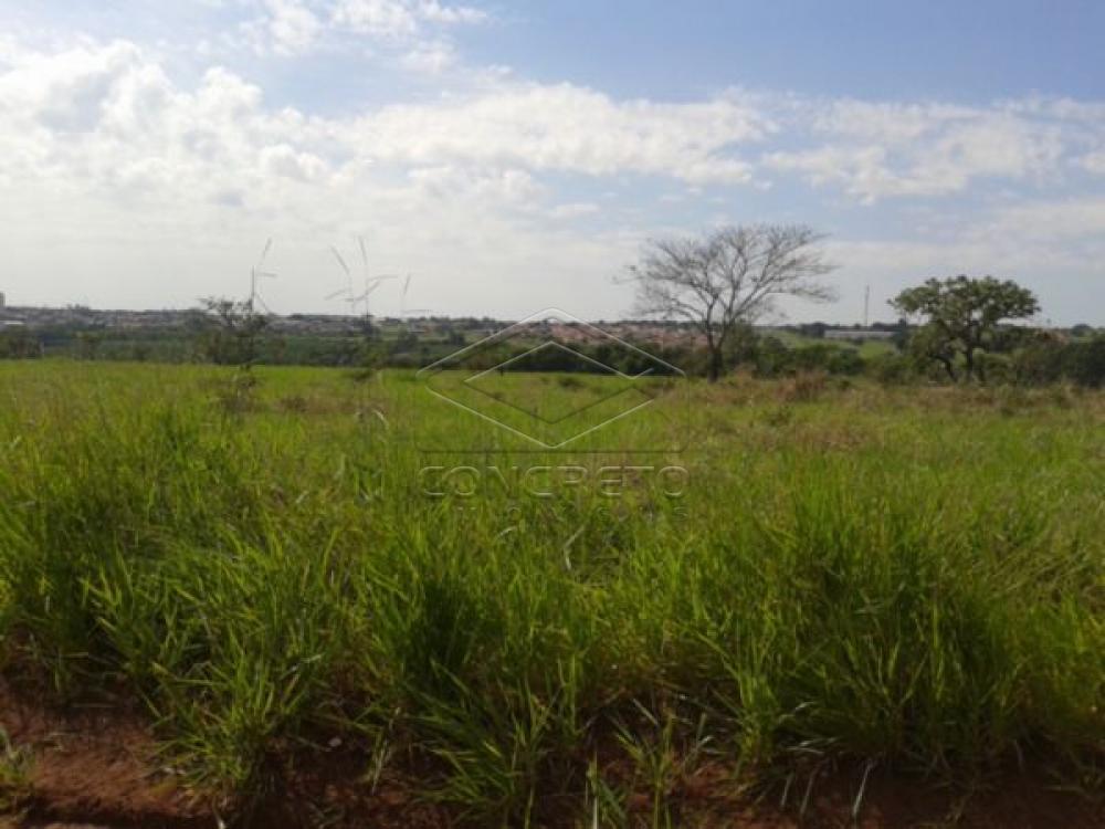 Comprar Terreno / Padrão em Sao Manuel R$ 500.000,00 - Foto 3
