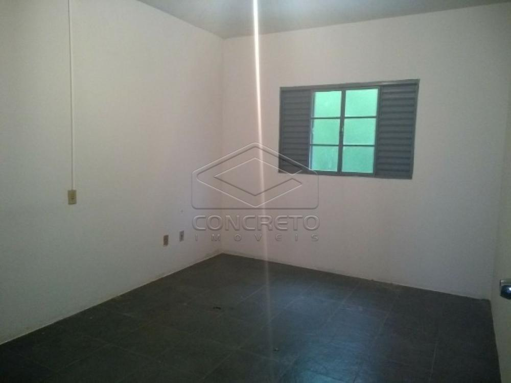 Alugar Casa / Padrão em Botucatu apenas R$ 900,00 - Foto 2