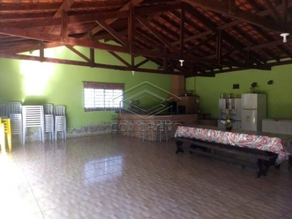 Comprar Rural / Chácara / Fazenda em Lençóis Paulista R$ 350.000,00 - Foto 9