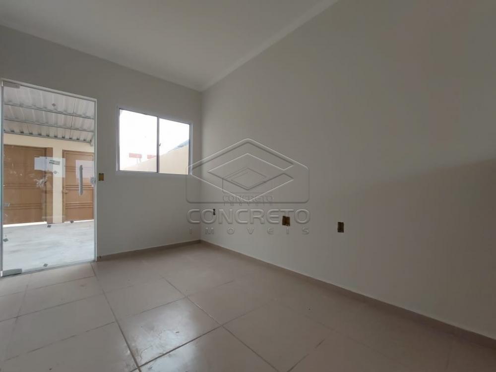 Alugar Casa / Residencia em Jau apenas R$ 900,00 - Foto 3