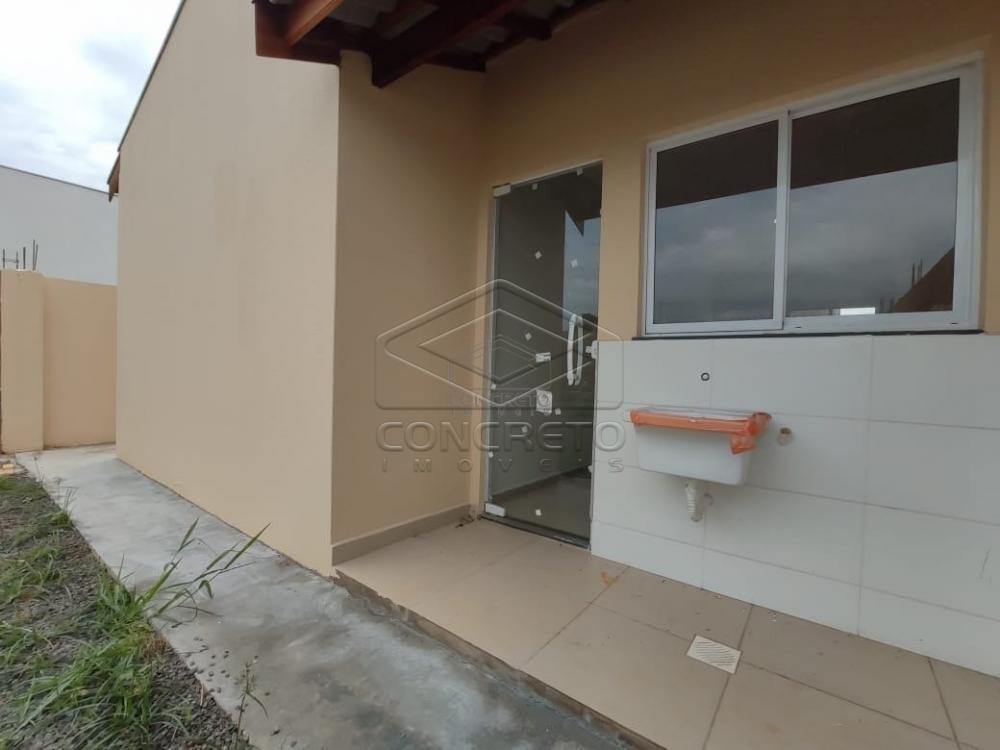 Alugar Casa / Residencia em Jau apenas R$ 900,00 - Foto 13