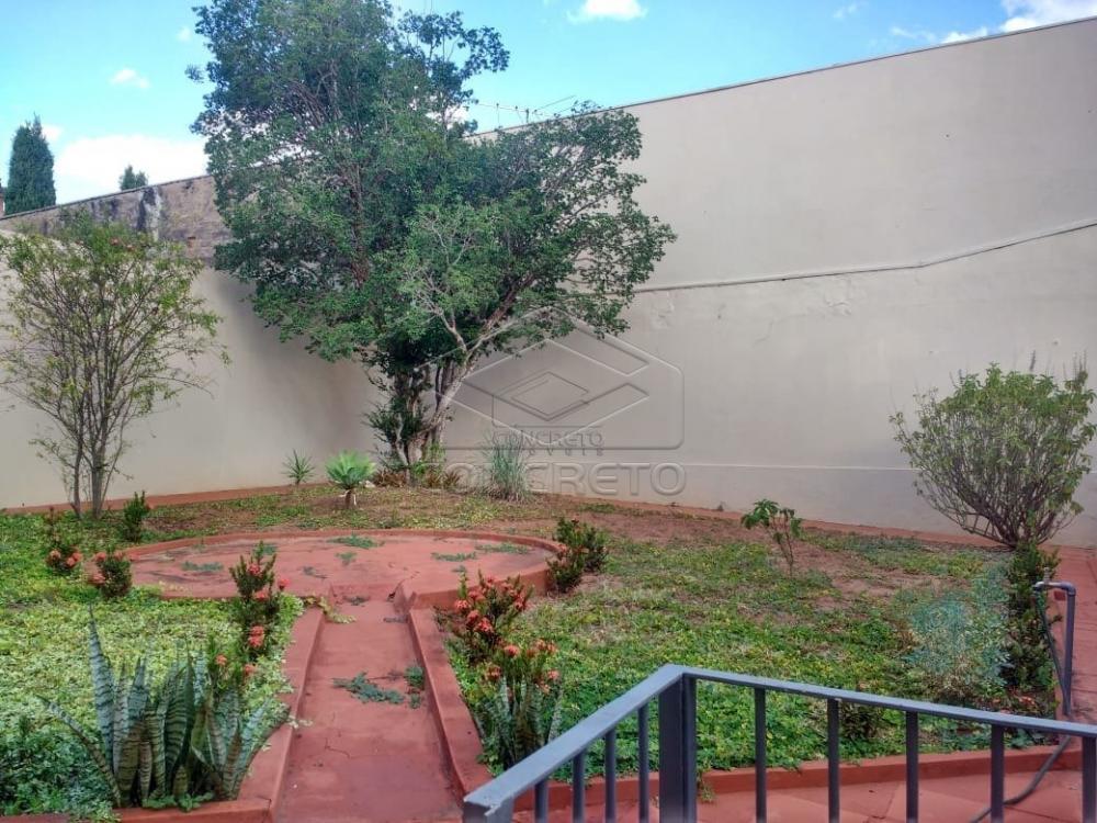 Alugar Casa / Comercial/Residencial em Bauru apenas R$ 3.000,00 - Foto 2