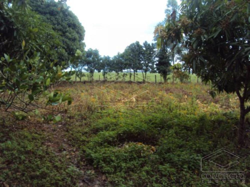 Comprar Rural / Chácara / Fazenda em Lençóis Paulista R$ 330.000,00 - Foto 5