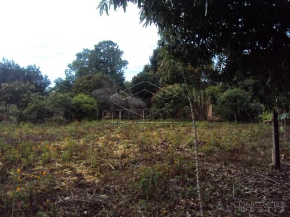 Comprar Rural / Chácara / Fazenda em Lençóis Paulista R$ 330.000,00 - Foto 6
