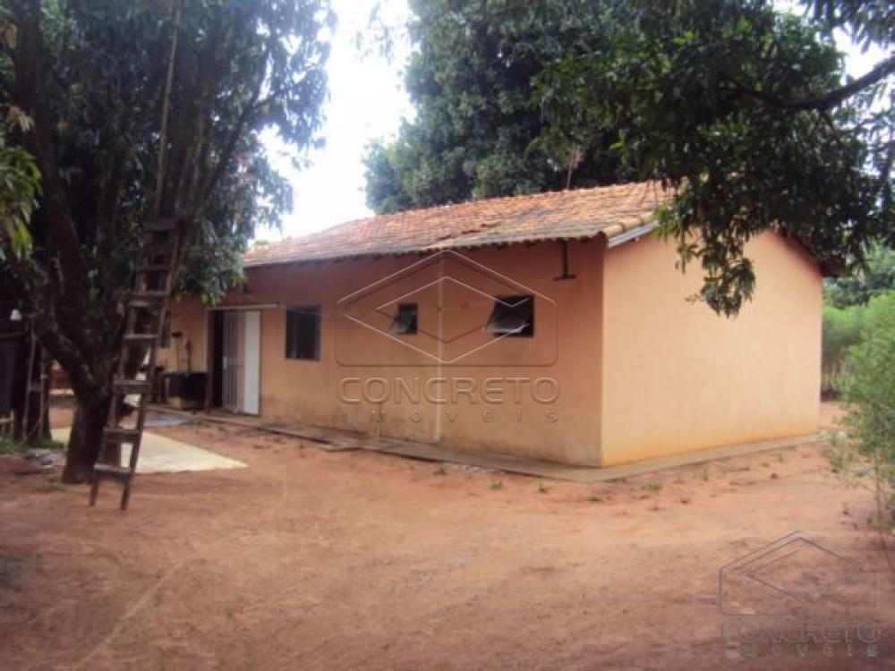 Comprar Rural / Chácara / Fazenda em Lençóis Paulista R$ 330.000,00 - Foto 19