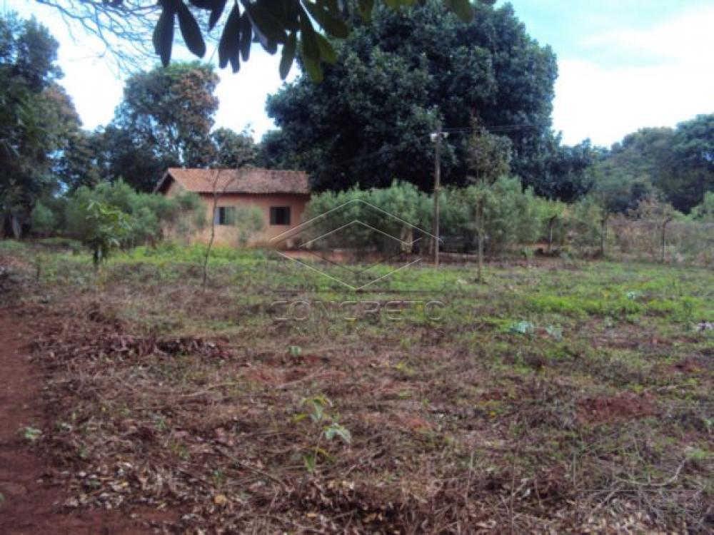 Comprar Rural / Chácara / Fazenda em Lençóis Paulista R$ 330.000,00 - Foto 20