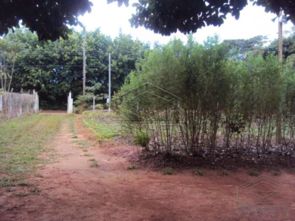 Comprar Rural / Chácara / Fazenda em Lençóis Paulista R$ 330.000,00 - Foto 24
