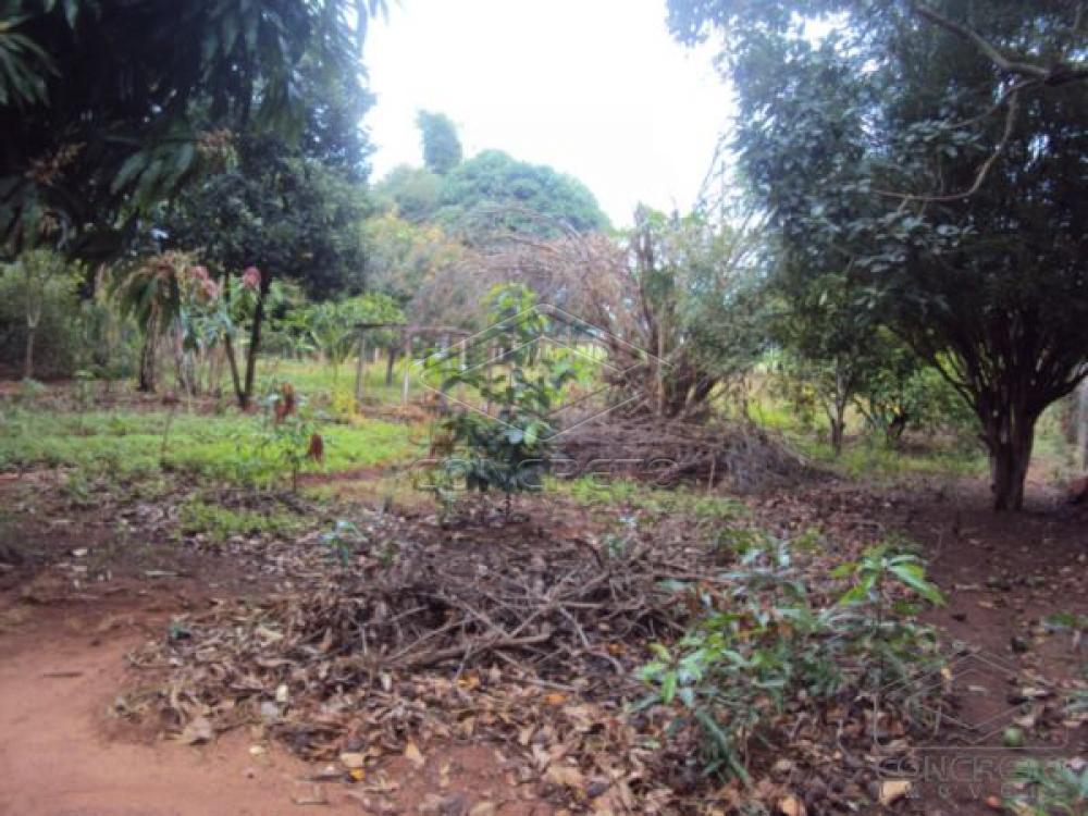 Comprar Rural / Chácara / Fazenda em Lençóis Paulista R$ 330.000,00 - Foto 26