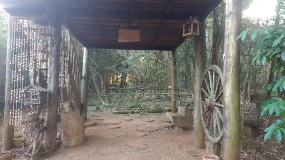 Comprar Rural / Chácara / Fazenda em Bauru R$ 379.000,00 - Foto 1
