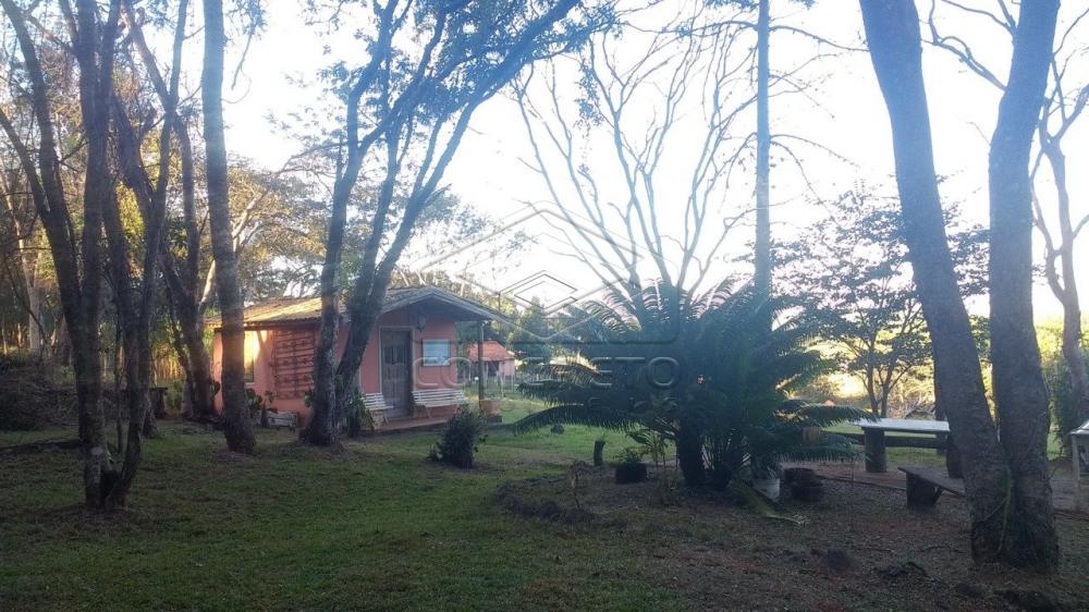 Comprar Rural / Chácara / Fazenda em Bauru R$ 379.000,00 - Foto 4