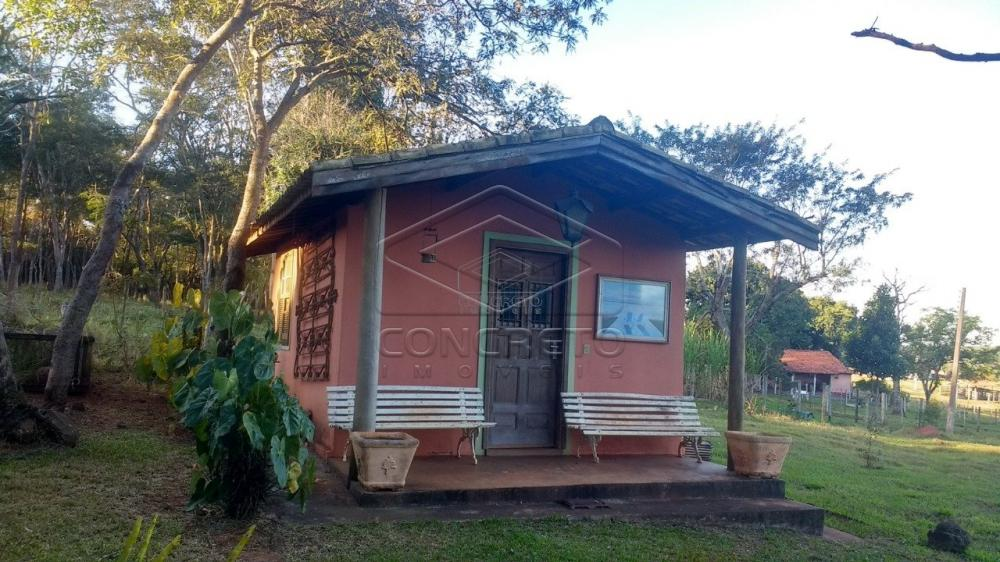 Comprar Rural / Chácara / Fazenda em Bauru R$ 379.000,00 - Foto 5