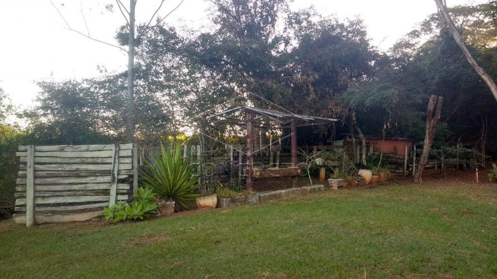 Comprar Rural / Chácara / Fazenda em Bauru R$ 379.000,00 - Foto 7