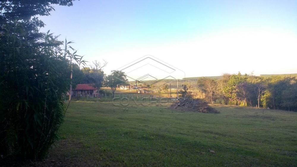 Comprar Rural / Chácara / Fazenda em Bauru R$ 379.000,00 - Foto 9