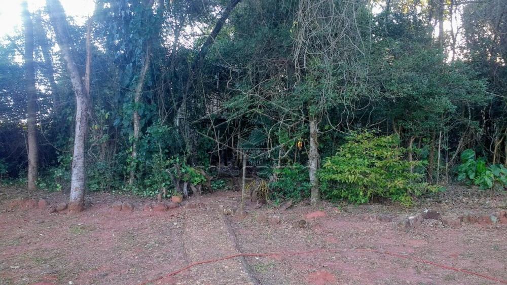 Comprar Rural / Chácara / Fazenda em Bauru R$ 379.000,00 - Foto 10