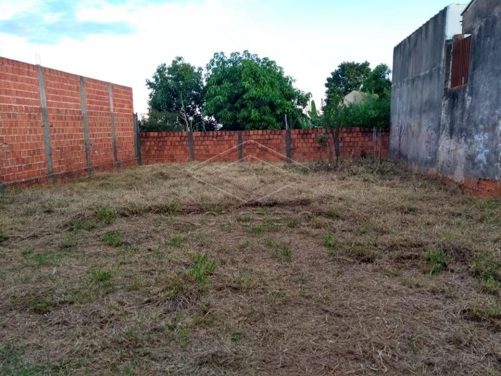 Comprar Casa / Padrão em Bauru apenas R$ 200.000,00 - Foto 11