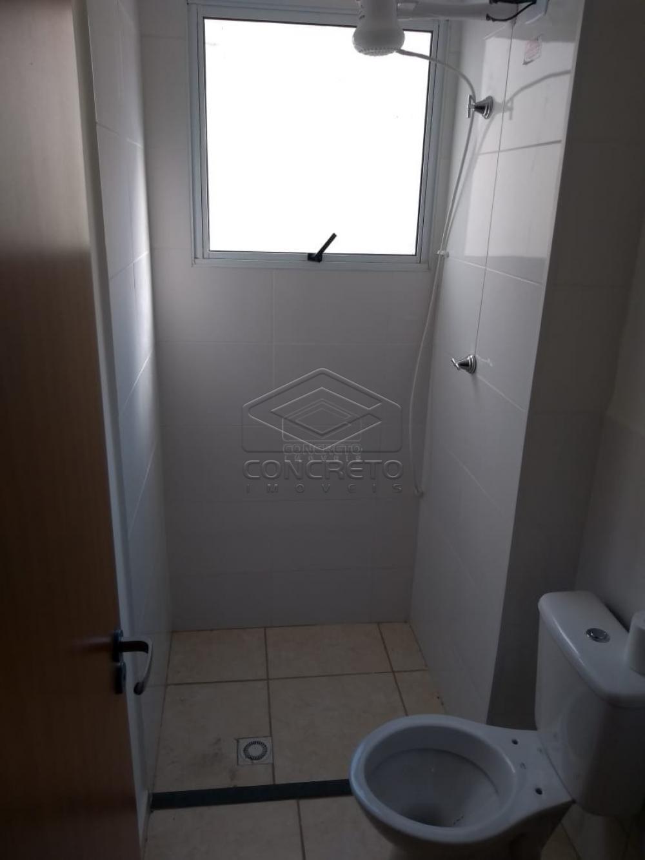 Alugar Apartamento / Padrão em Bauru apenas R$ 865,00 - Foto 8