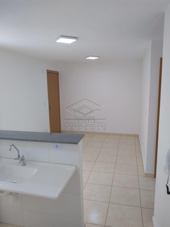 Alugar Apartamento / Padrão em Bauru apenas R$ 865,00 - Foto 12