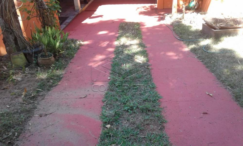 Comprar Rural / Chácara / Fazenda em Avaí R$ 250.000,00 - Foto 2