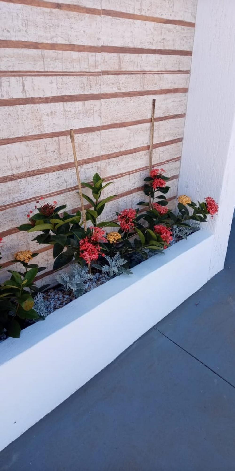 Comprar Casa / Padrão em Sao Manuel apenas R$ 650.000,00 - Foto 5