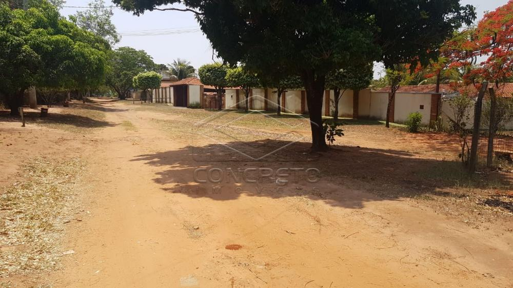 Comprar Rural / Chácara / Fazenda em Bauru R$ 290.000,00 - Foto 1