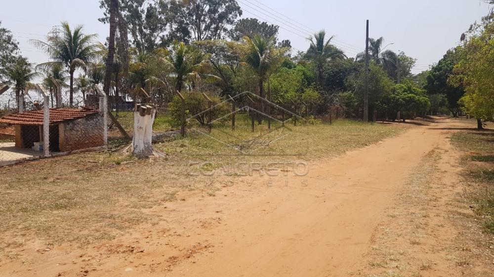 Comprar Rural / Chácara / Fazenda em Bauru R$ 290.000,00 - Foto 3