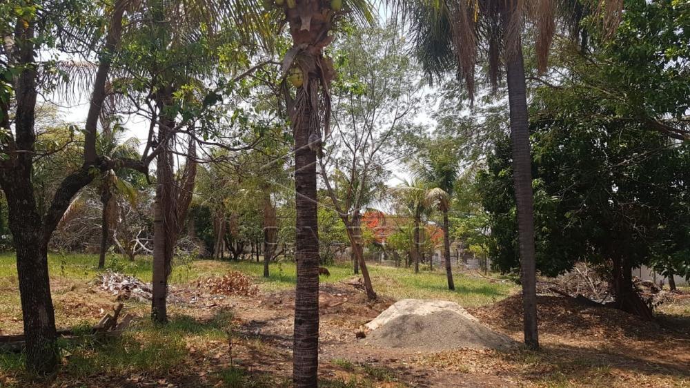 Comprar Rural / Chácara / Fazenda em Bauru R$ 290.000,00 - Foto 5