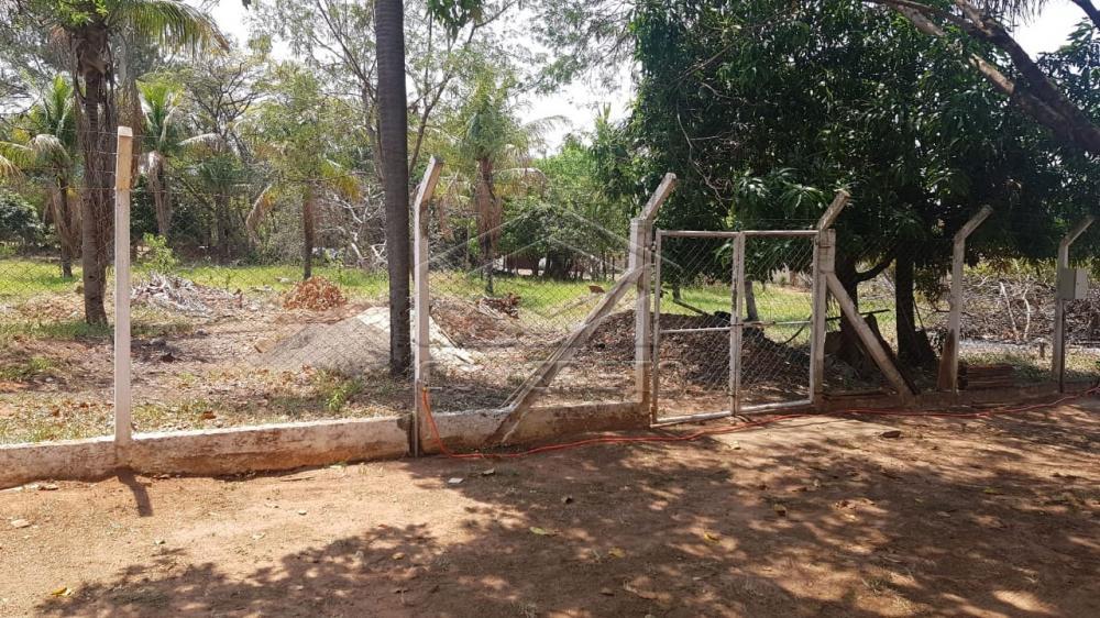 Comprar Rural / Chácara / Fazenda em Bauru R$ 290.000,00 - Foto 6