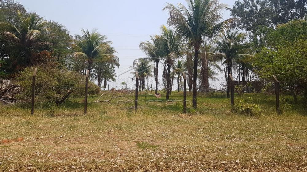 Comprar Rural / Chácara / Fazenda em Bauru R$ 290.000,00 - Foto 7