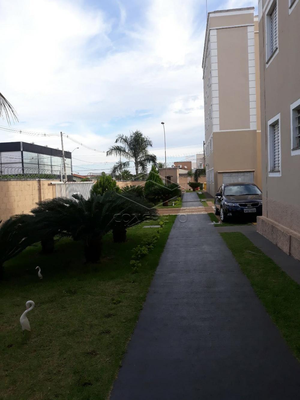 Alugar Apartamento / Padrão em Bauru R$ 950,00 - Foto 20
