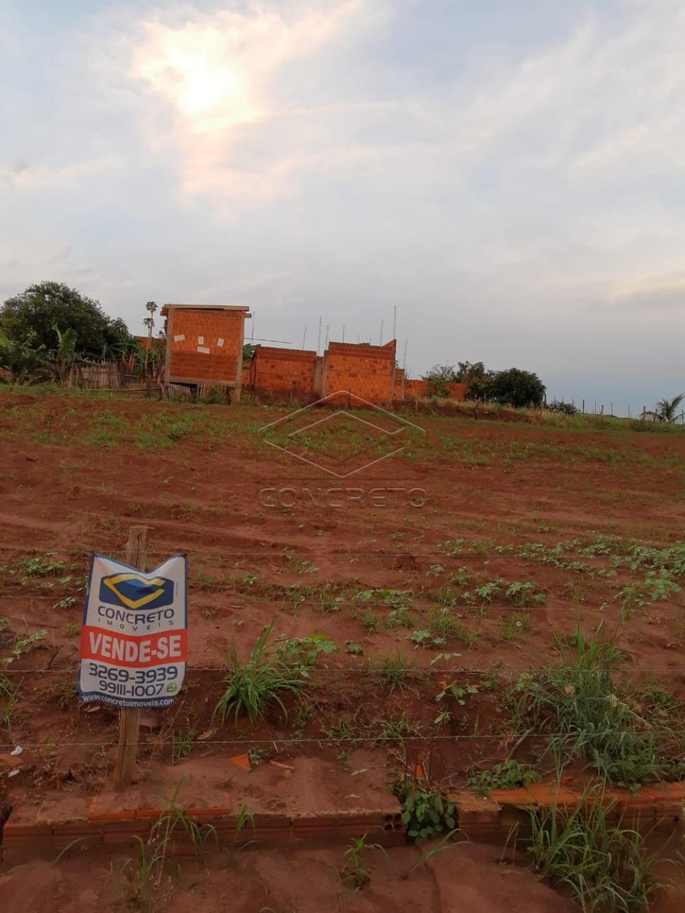 Comprar Rural / Chácara / Fazenda em Macatuba R$ 120.000,00 - Foto 5