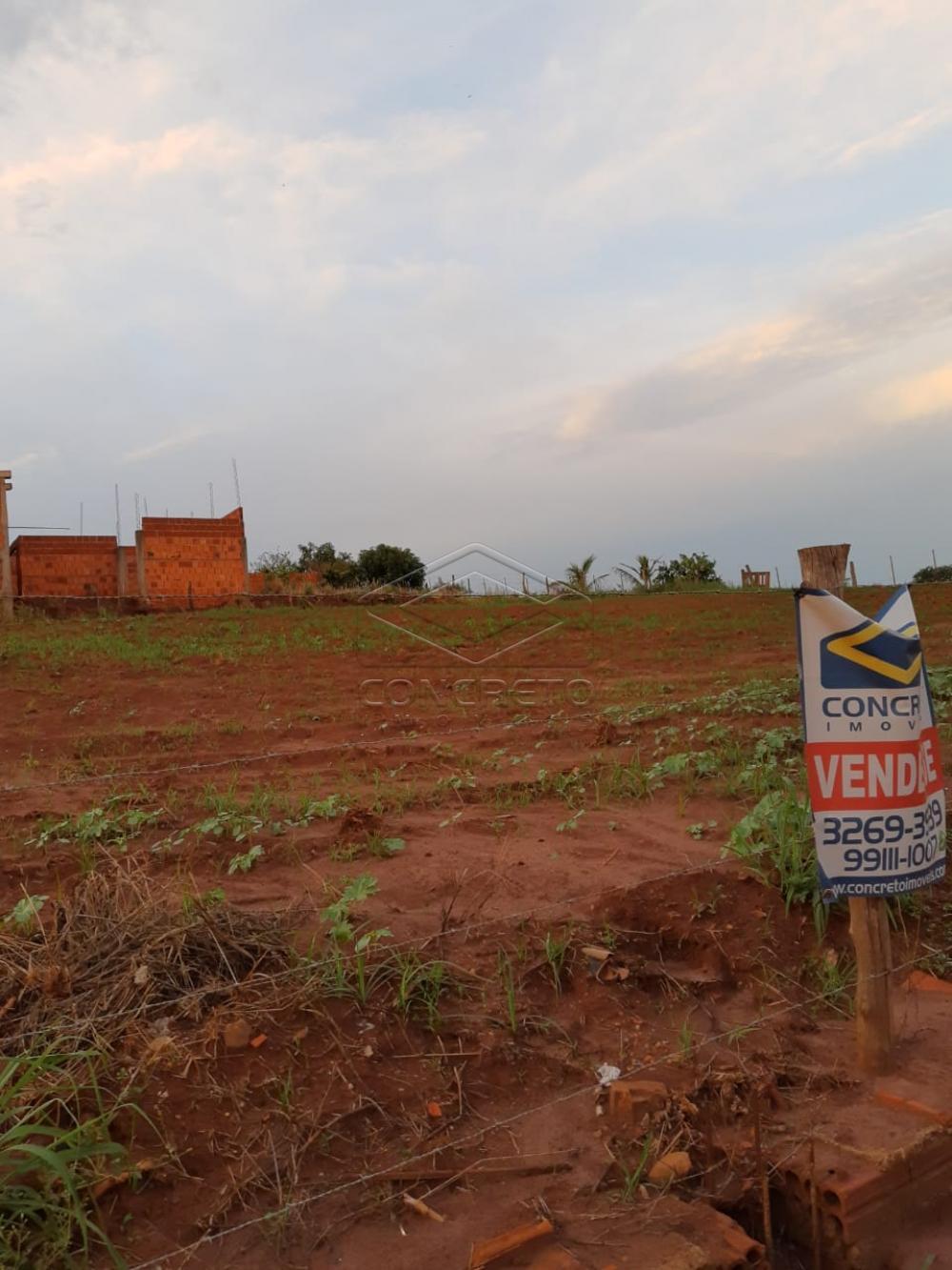 Comprar Rural / Chácara / Fazenda em Macatuba R$ 120.000,00 - Foto 6