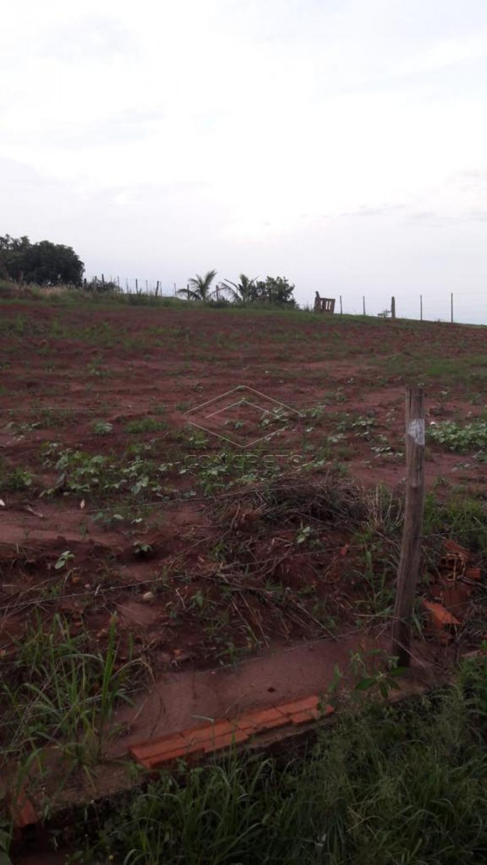 Comprar Rural / Chácara / Fazenda em Macatuba R$ 120.000,00 - Foto 7