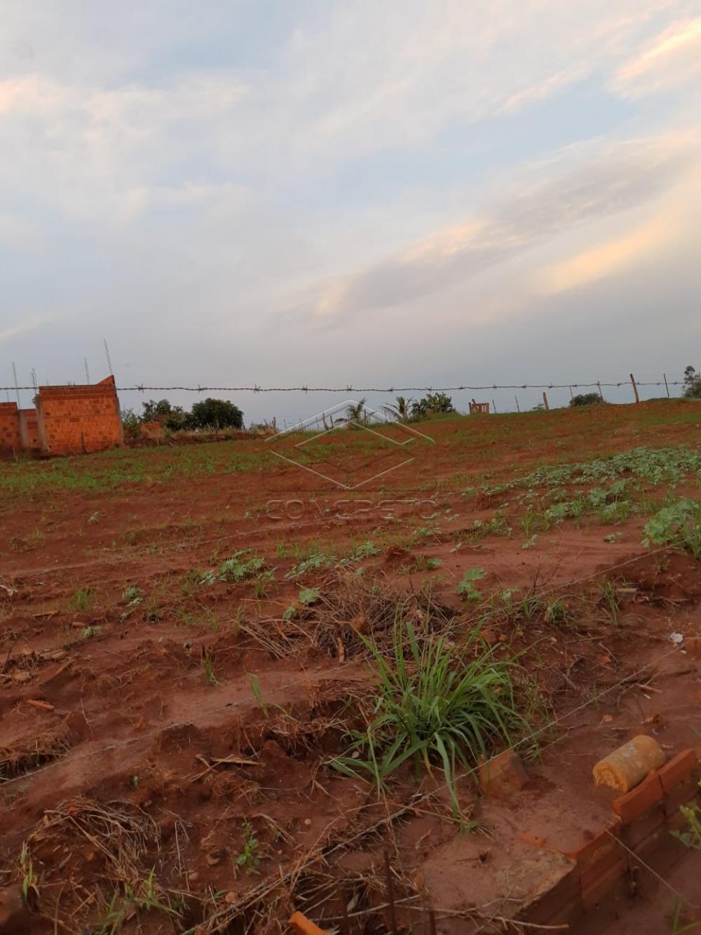 Comprar Rural / Chácara / Fazenda em Macatuba R$ 120.000,00 - Foto 9