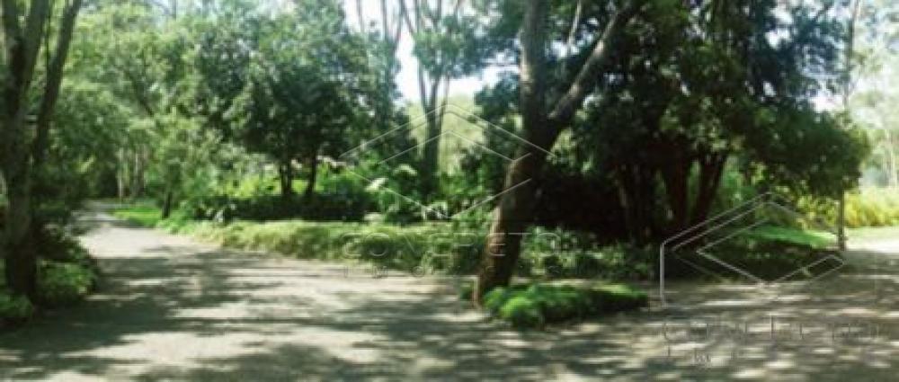 Comprar Terreno / nao usar em Arealva R$ 318.000,00 - Foto 1