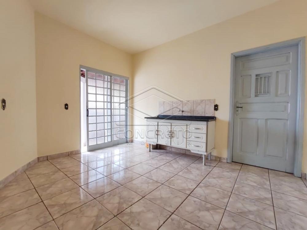 Alugar Casa / Residencia em Jaú apenas R$ 450,00 - Foto 1