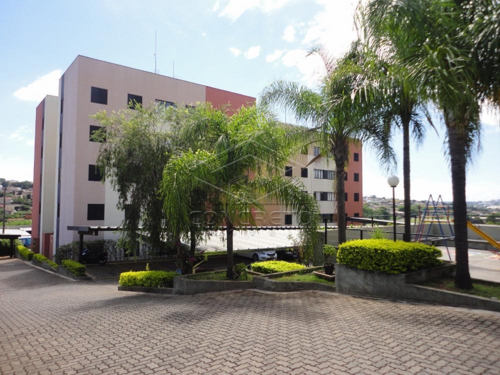 Alugar Apartamento / Padrão em Bauru R$ 600,00 - Foto 11