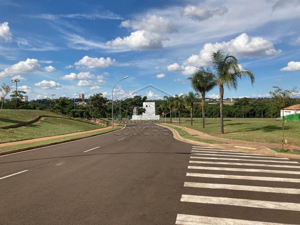 Comprar Terreno / Condomínio em Bauru R$ 570.000,00 - Foto 3