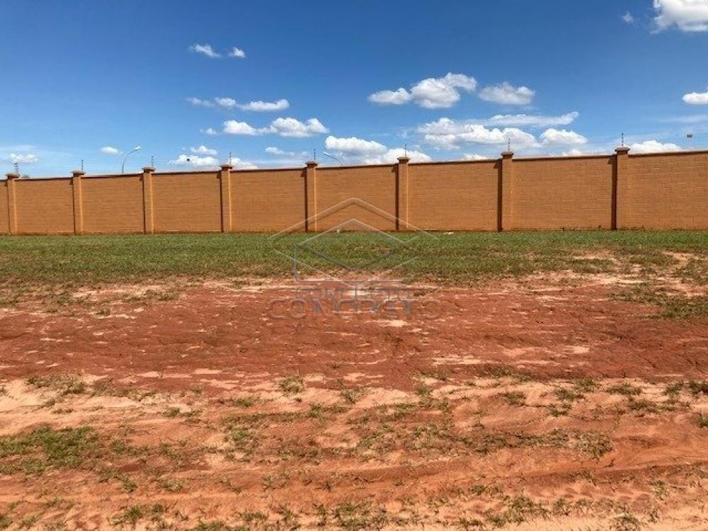 Comprar Terreno / Condomínio em Bauru R$ 466.000,00 - Foto 8