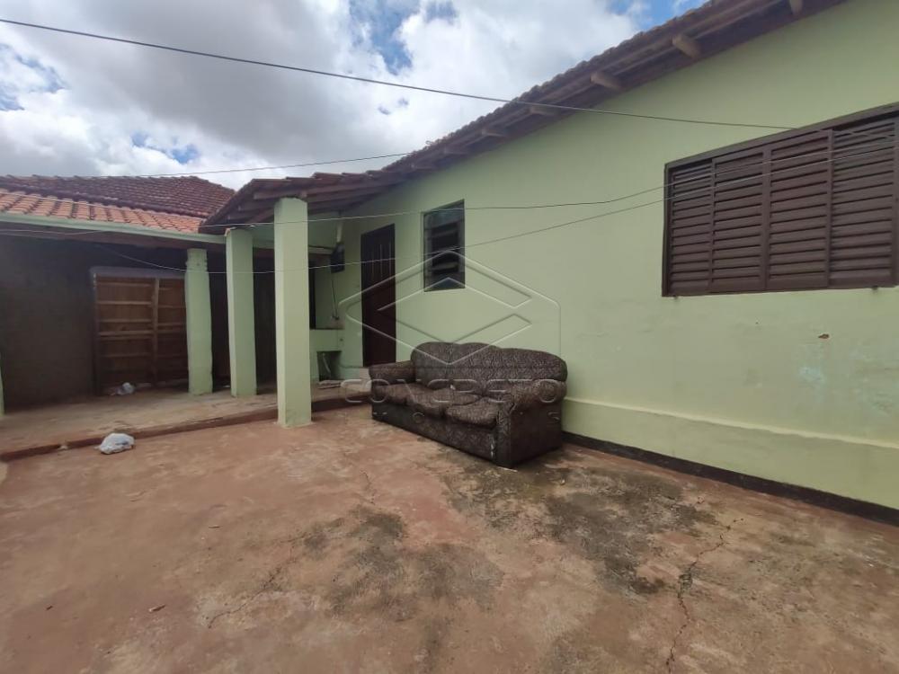 Alugar Casa / Residencia em Jaú apenas R$ 420,00 - Foto 2
