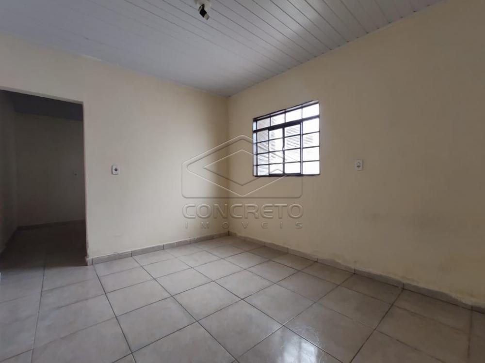 Alugar Casa / Residencia em Jaú apenas R$ 600,00 - Foto 3