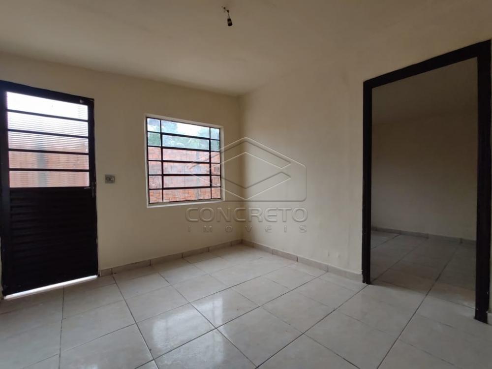 Alugar Casa / Residencia em Jaú apenas R$ 600,00 - Foto 13