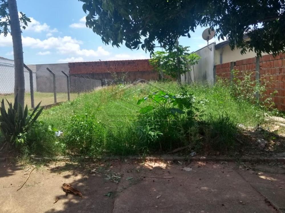 Comprar Terreno / Padrão em Bauru apenas R$ 140.000,00 - Foto 1