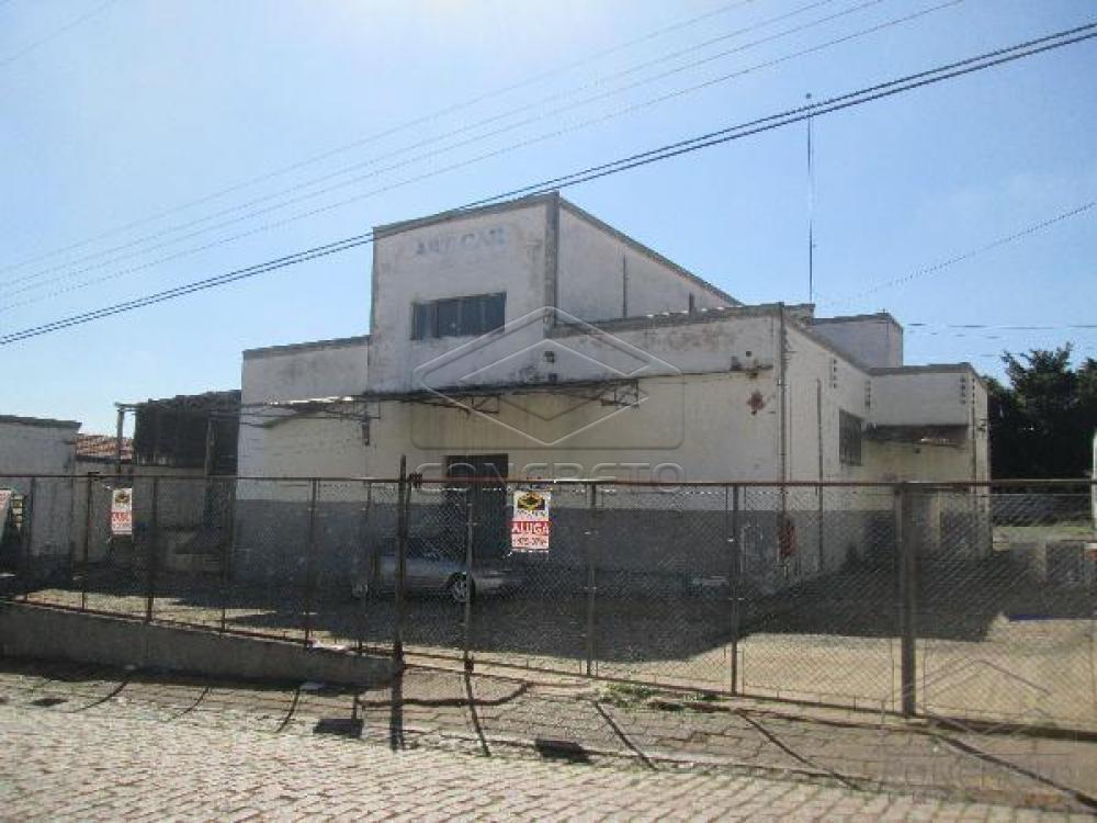 Alugar Comercial / Galpão em Bauru apenas R$ 5.000,00 - Foto 3