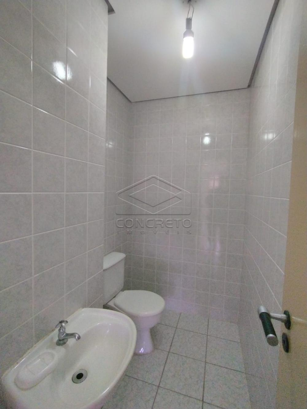 Alugar Comercial / Sala em Bauru R$ 700,00 - Foto 2