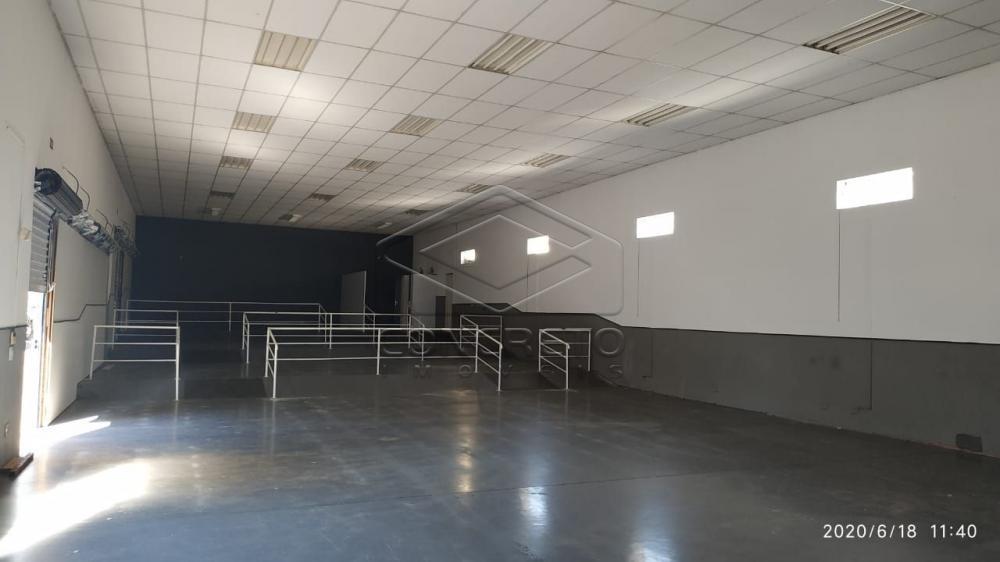 Comprar Comercial / Barracão em Bauru R$ 1.800.000,00 - Foto 4