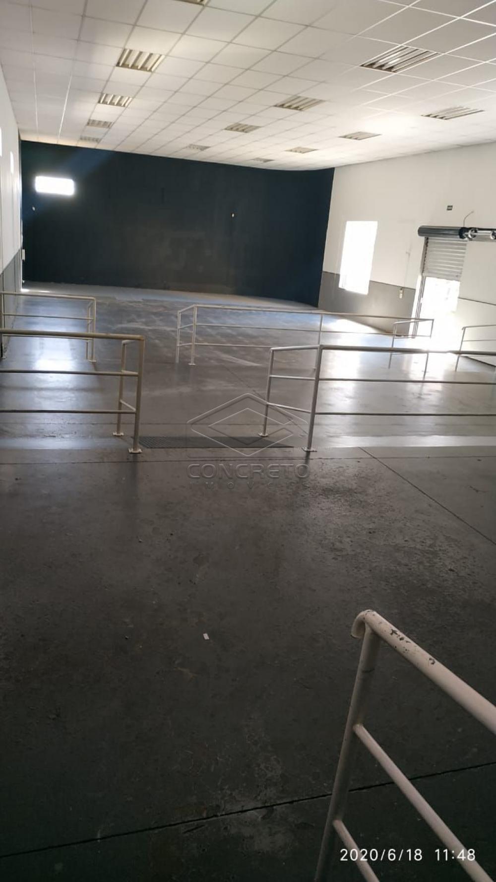 Comprar Comercial / Barracão em Bauru R$ 1.800.000,00 - Foto 5