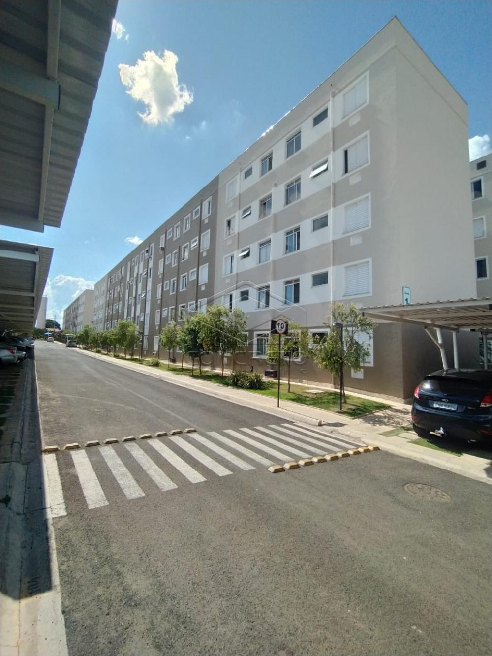 Alugar Apartamento / Padrão em Bauru apenas R$ 550,00 - Foto 1