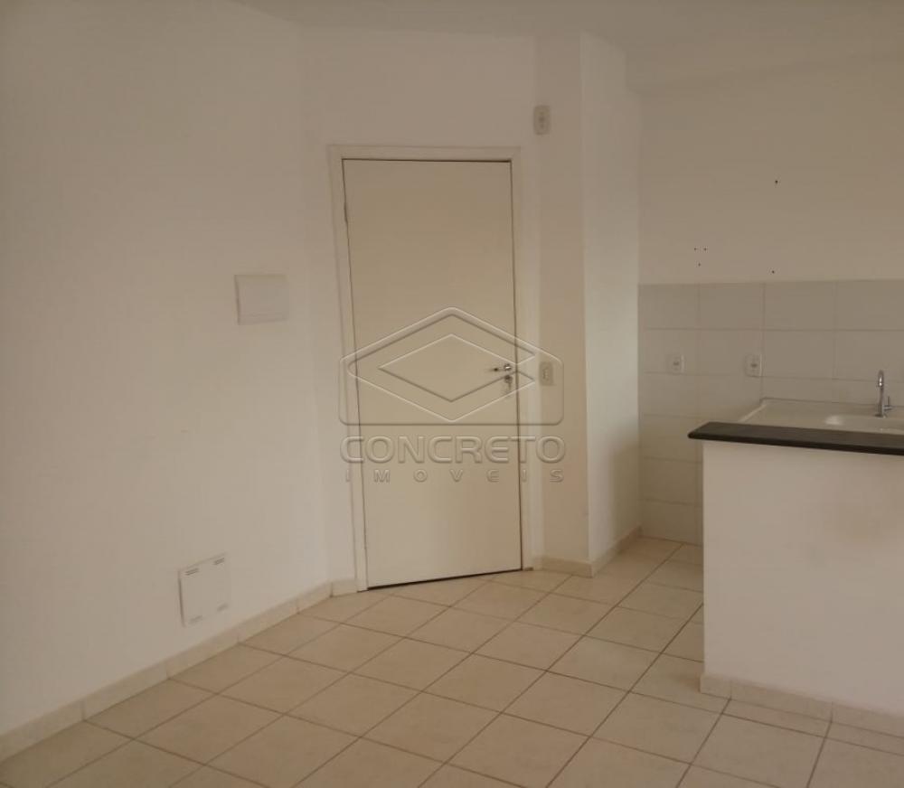 Comprar Apartamento / Padrão em Jaú apenas R$ 140.000,00 - Foto 1