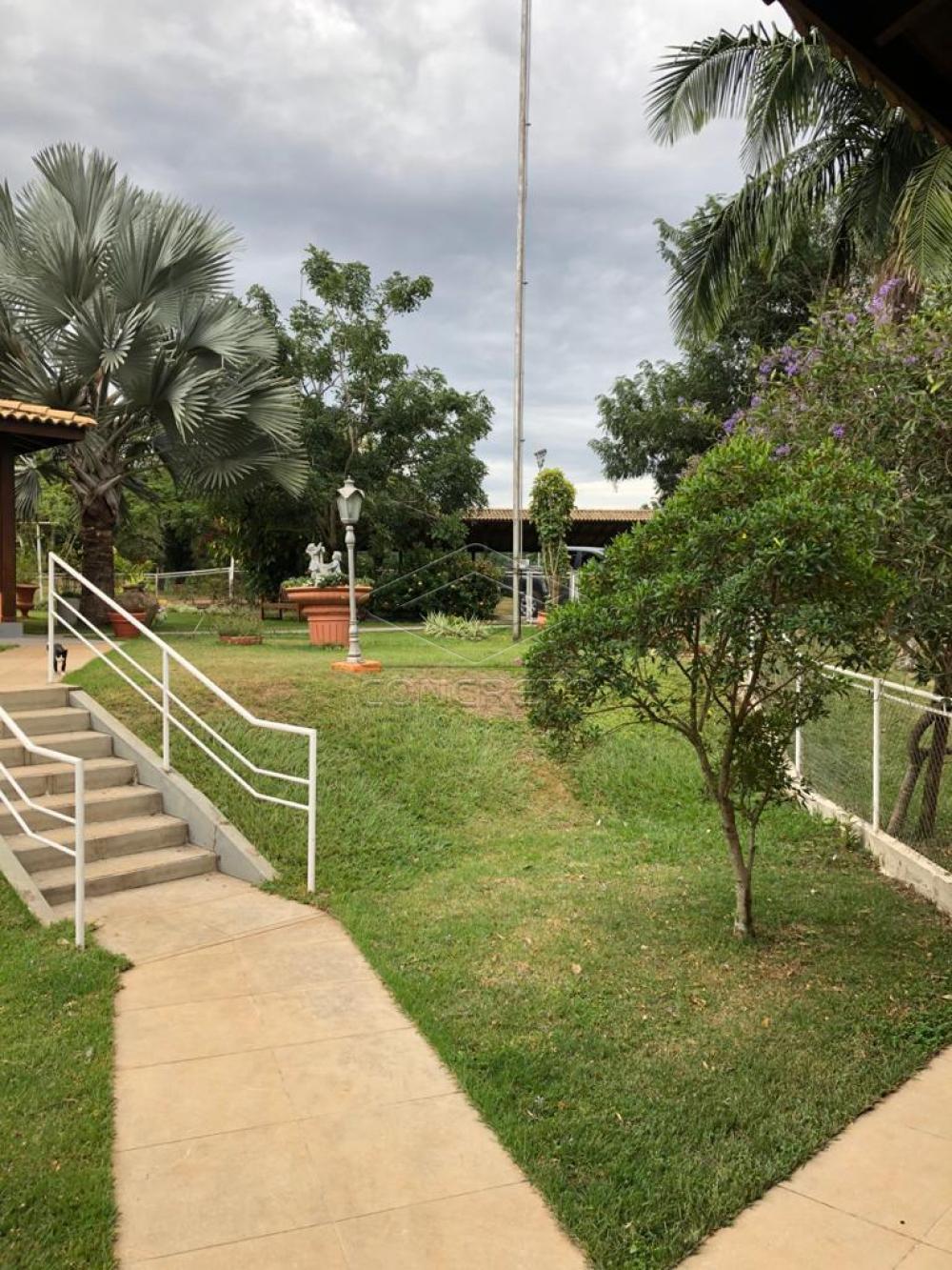 Comprar Rural / Chácara / Fazenda em Duartina apenas R$ 13.000.000,00 - Foto 4